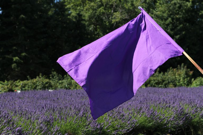 lav-farm-purple-flag