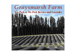 Graysmarsh Farm