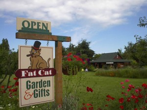 Fat Cat Garden & Gifts