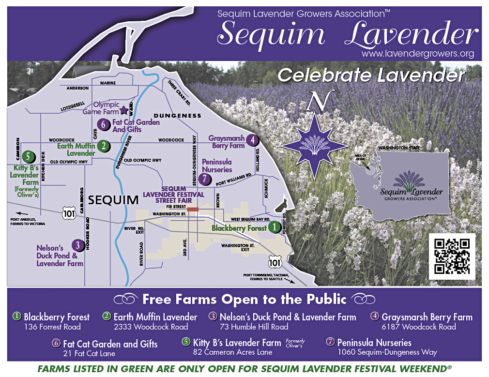PDN Lavender Map Back