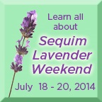 Sequim Lavender Weekend